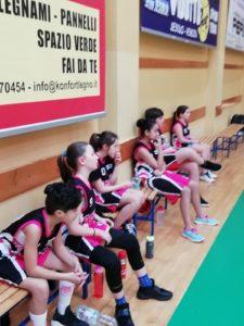 Pink Ladies Raggruppamento 23 02 2019 - PalaCornaro (3)